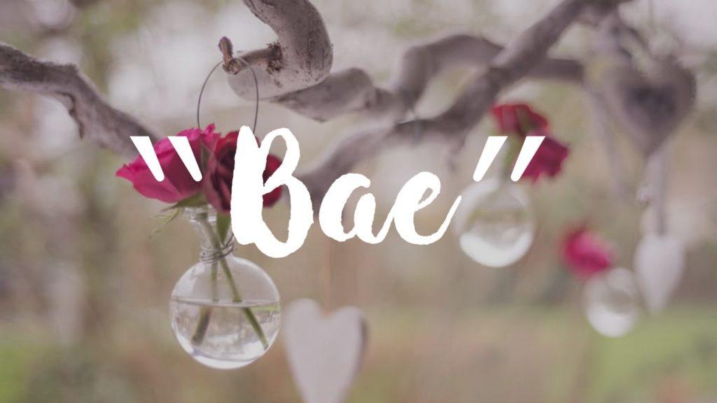 Arti Kata Slang BAE Dalam Bahasa Inggris