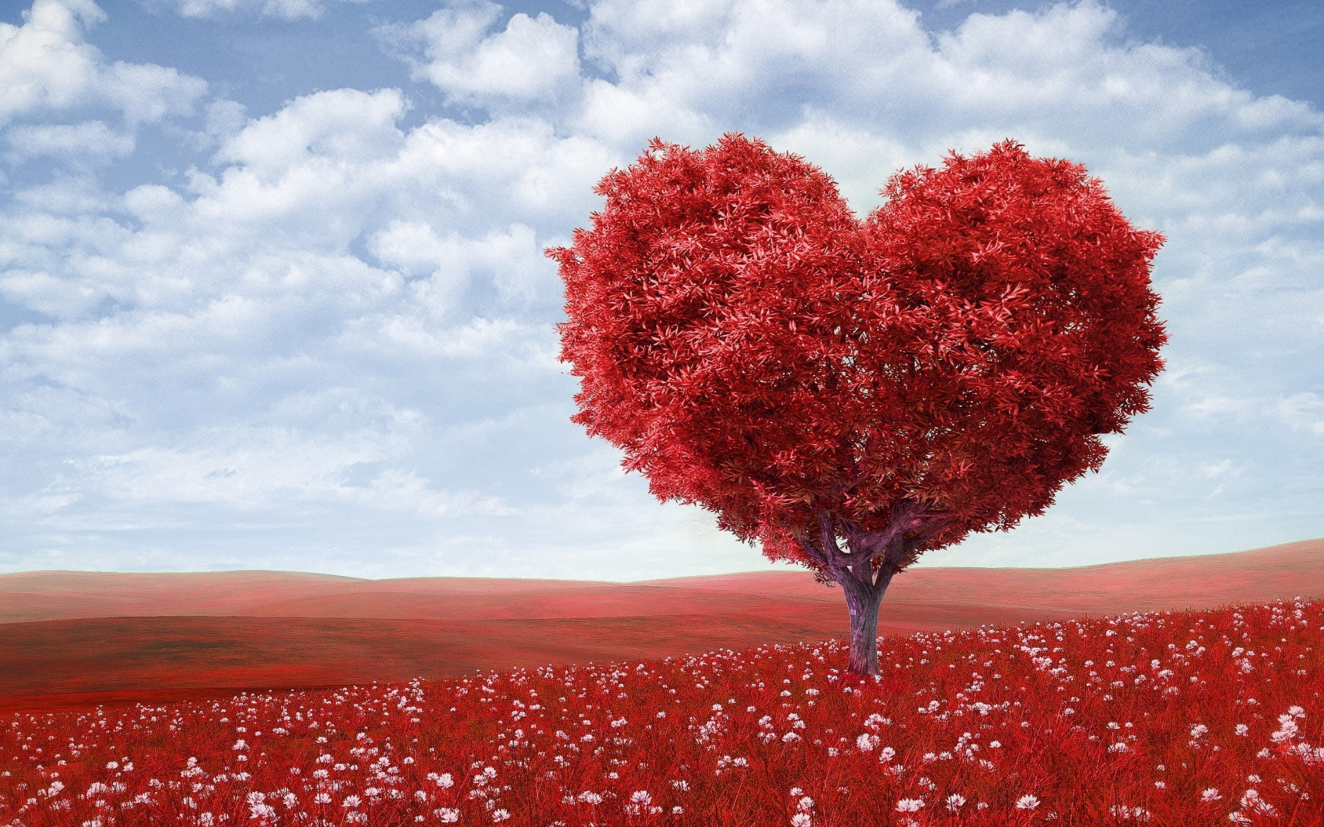 Cara Menyatakan Cinta Dalam Bahasa Inggris